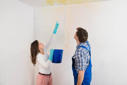 Woman showing plumber the water coming through her ceiling